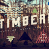 Timber! - Courtesy Artist Home